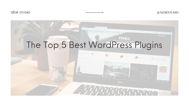 The Top 5 Best WordPress Plugins